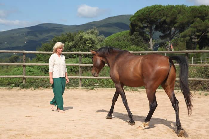Happy Horse Spain