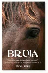 Bruja book